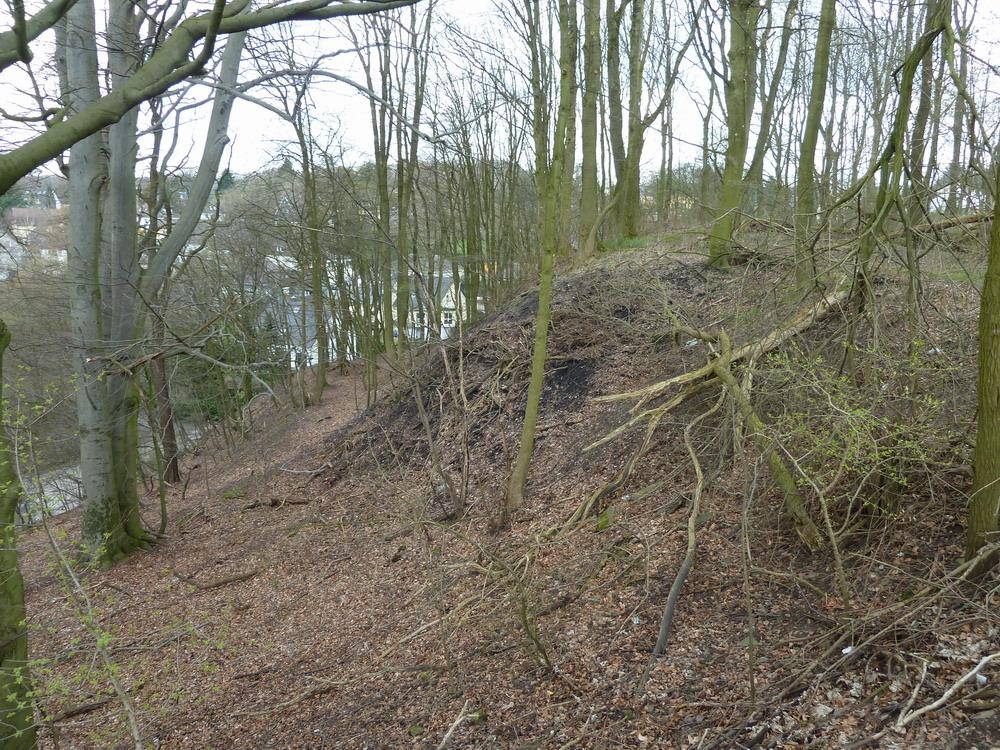Der frei liegende Hang von der Lichtscheider Straße aus gesehen.